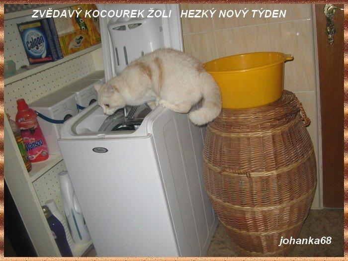 An den Beitrag angehängtes Bild: http://img20.dreamies.de/img/37/b/8ec8s4zui4g.jpg